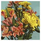 Vibrant Bouquet I Giclee Print by Rick Novak