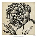 Graphic Floral II Giclée-Druck von  Vision Studio