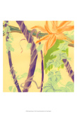 Jungle Monotype V Prints by Carolyn Roth