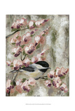 Cherry Blossom Bird I Prints by Jade Reynolds
