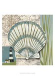 Seaside Shell II Print by Chariklia Zarris