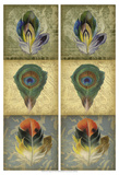 2-Up Feather Triptych II Art by Jennifer Goldberger