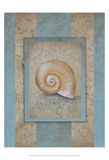 Shell & Damask Stripe I Poster by Rita Broughton