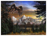 Soaring Eagle Giclee Print by Kevin Daniel