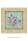 Shell & Damask II Prints by Rita Broughton