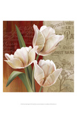 French Tulip Collage II Print by Abby White