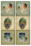 2-Up Feather Triptych I Posters by Jennifer Goldberger