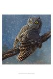 Owl in Winter I Kunstdruck von Chris Vest