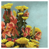 Vibrant Bouquet II Giclee Print by Rick Novak