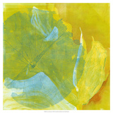 Lotus Monotype I Giclee Print by Carolyn Roth
