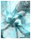 Immersed I Giclee Print by Pam Ilosky