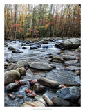 Porter's Creek II Giclee Print by Danny Head