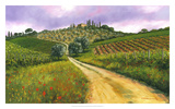 Tuscan Road Giclee Print by Michael Swanson
