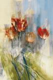 Tulips Prints by Simon Addyman