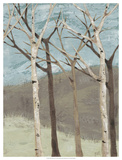 Blue Birches II Giclee Print by Jade Reynolds