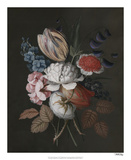 Dramatic Bouquet I Giclee Print