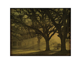 The Oaks Plantation Morning Light Giclee Print by William Guion