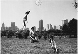Frisbee Dogs Central Park New York City Archival Photo Poster Posters