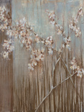 Spring Blossoms Posters by Terri Burris