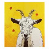 Goat 33 Reprodukcje autor Yvette Buigues