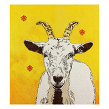 Goat 33 Prints by Yvette Buigues