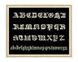 Ornamental French Alphabet (black) Posters