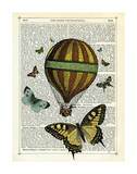 Butterflies & Balloon Posters by Marion Mcconaghie