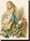 Alice with squirrel Stretched Canvas Print