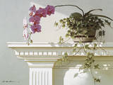 Mantelpiece Orchid Prints by Zhen-Huan Lu