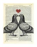 Pigeons in Love Art par Marion Mcconaghie