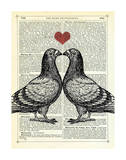 Pigeons in Love Art by Marion Mcconaghie