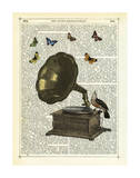 Gramophone, Bird & Butterflies Prints by Marion Mcconaghie