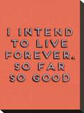 I Intend to Live Forever Stretched Canvas Print