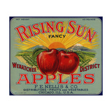 Fruit Crate Labels: Rising Sun Fancy Apples; F.E. Nellis and Company Giclee Print