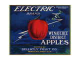 Warshaw Collection of Business Americana Food; Fruit Crate Labels, Gellatly Fruit Co. Giclee Print