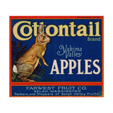 Warshaw Collection of Business Americana Food; Fruit Crate Labels, Farwest Fruit Co. Giclee Print