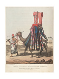 Smithsonian Libraries: Camel Conveying a Bride to her Husband Giclee Print
