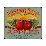 Warshaw Collection of Business Americana Food; Fruit Crate Labels, F.E. Nellis & Co. Lámina giclée