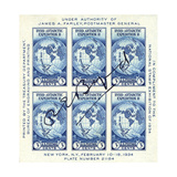 National Postal Museum: Byrd Antarctic Expedition 3-Cent Postage Giclee Print