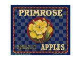 Warshaw Collection of Business Americana Food; Fruit Crate Labels, D.W.C.L. Primrose Brand Giclee Print