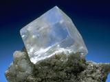 MineralCalendar: Halite. Eisleben, Germany Photographic Print
