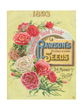 Seed Catalogues: W.W. Rawson and Co. Rawson's Vegetable and Flower Seeds. Boston, MA, 1893 Giclee Print