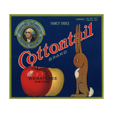 Warshaw Collection of Business Americana Food; Fruit Crate Labels, Stratford Orchards Co. Giclee Print