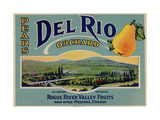 Fruit Crate Labels: Del Rio Orchard Pears; Rogue River Valley Fruits Giclee Print