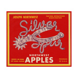 Warshaw Collection of Business Americana Food; Fruit Crate Labels, NorthwestApples Giclee Print