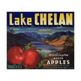 Warshaw Collection of Business Americana Food; Fruit Crate Labels, Lake Chelan Growers Union Lámina giclée