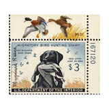 National Postal Museum: 3 Dollar Duck Stamp Remarque Giclee Print