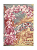 Siebrecht and Son Rose Hill Nurseries: New Rare and Beautiful Plants Giclee Print