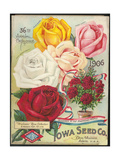 Seed Catalog Captions (2012): Iowa Seed Co. Des Moines, Iowa. 36th Annual Catalogue, 1906 Giclee Print