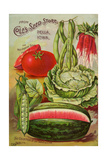 Six Varieties from Cole's Seed Store, Pella, Iowa Giclée-tryk